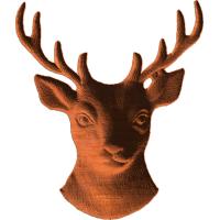 Deer - 277