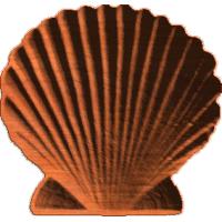 Shell - 214