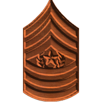 ArmyCSgtMaj