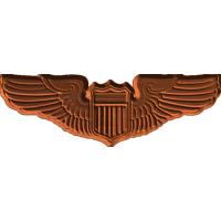 AF Basic Pilot Badge
