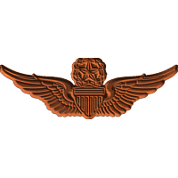 ArmyMstr Aviator Badge