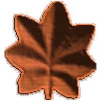 Military O4 and O5 Oak Leaf