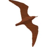 Seagull 01 Silhoette