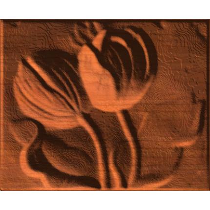 Flowers - Water Lilies