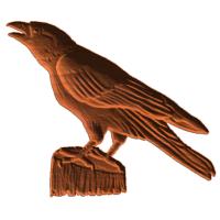 Crow5x6 1