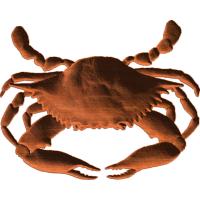 BlueCrab55x7 1