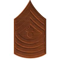 USMC MGYSGT