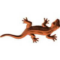Lizard-CL