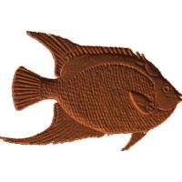 Fish2-CL