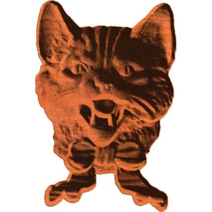 Cat Bust