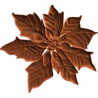 Poinsettia5x56 1
