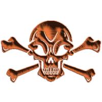 Skull and Cross Bones 3D