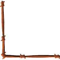 Barbed Wire Corner