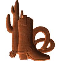 BootsCactusHorseshoes