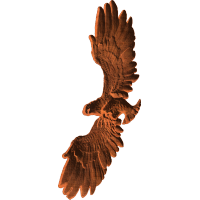 EagleFlight