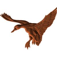 Duck Landing45x6 1