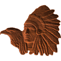 IndianEagleProfile