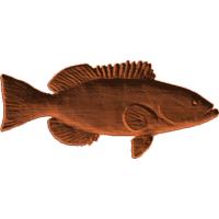 Black grouper 01