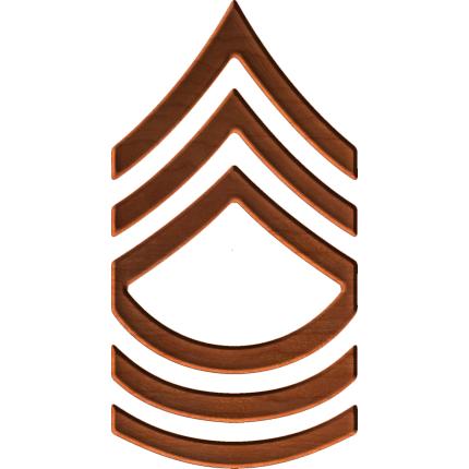 Army Rank E8 Master Sergeant