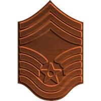 Air Force Rank E - 9 Chief Master Sergeant