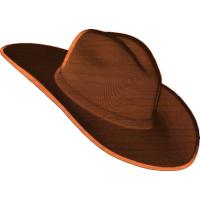 Cowboy Hat 001