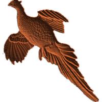 FlyingPhesant