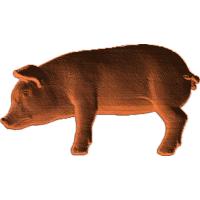 Pig - 1