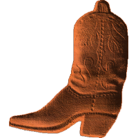 Cowboy Boot 2