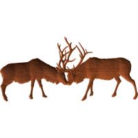Fighting Elks