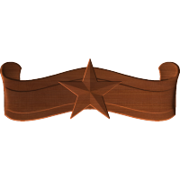 Star and Banner VA3D
