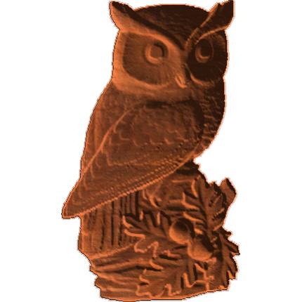 OwlOnAccornBranch