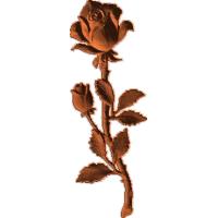 RoseStem