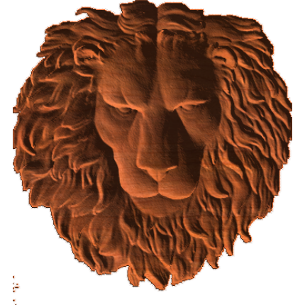 LionHeadForwardLooking