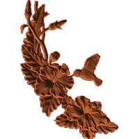 HummingbirdAndHoneysuckle