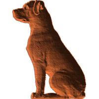 Rottweiler Sitting
