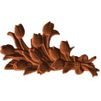 Tulips 2 - ML