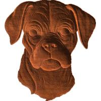 Boxer Face