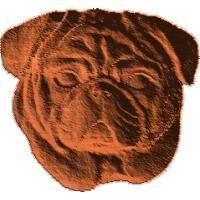 Pug Face - AB - 001