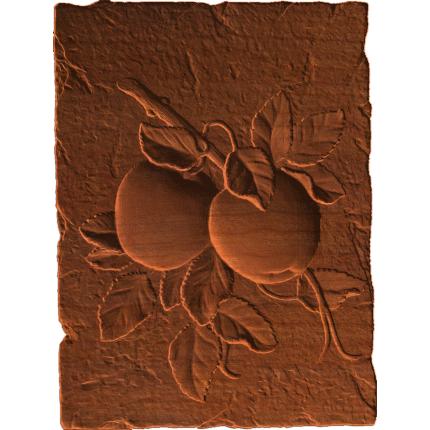 Apple Plaque RNB
