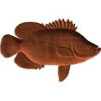 Tripletail Fish