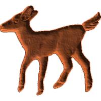 Deer fawn RL