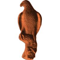 Falcon - Hawk