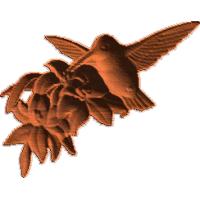 HummingbirdGroup2