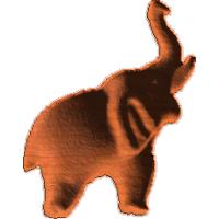 Elephant Small 1