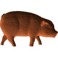 Pig - 2