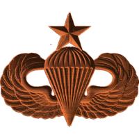 Senior Jump Wings (Airborne)