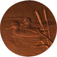 Duck Circle