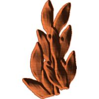 Leaf 161