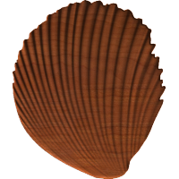 Simple Shell (VA3D)