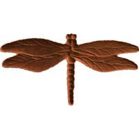 Dragonfly - AB - 001